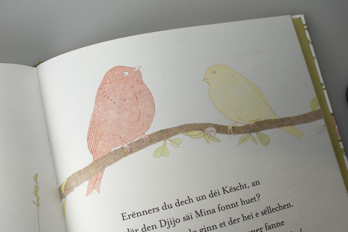 05_book_Djijo_Mina